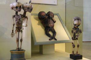 Weird-Museum-5
