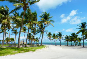 Crandon-Park-Beach-Majami-Bich
